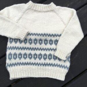 Bjørns Vintertrøje